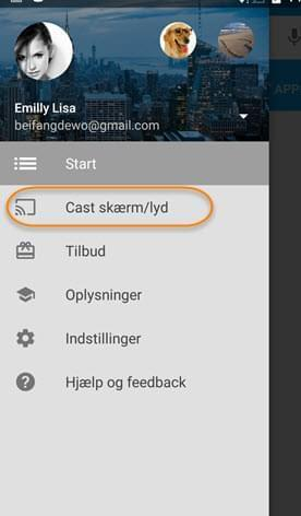 google cast menu
